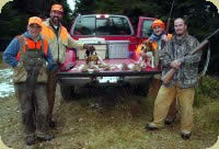 NH rabbit hunting